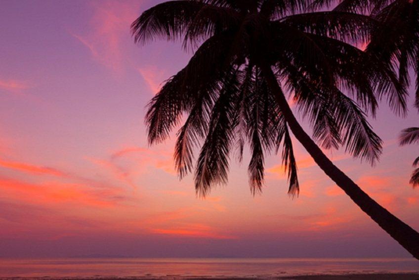 Bonita Beach Florida Vacation Rentals 5 Star Beach Rentals